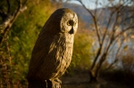 Wooden Owl in Hakone Detached PalaceGarden
