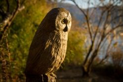 Wooden Owl in Hakone Detached Palace Garden