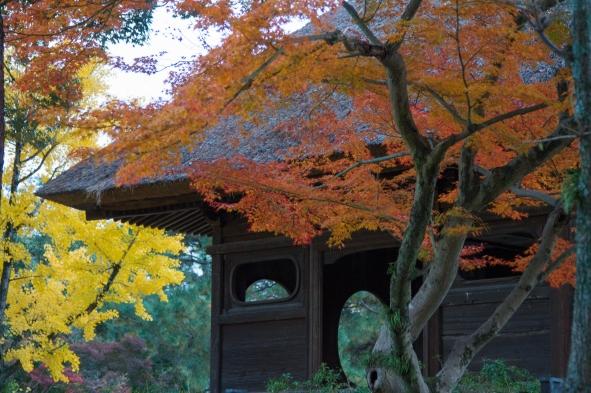 Temple Building, Nara Park