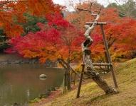 Dead tree and autumn colours, Sagiike Pond, Nara Park