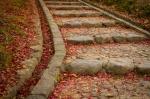 Stone Steps and Leaf Fall, Kataoka Plum Grove, NaraPark