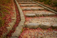 Stone Steps and Leaf Fall, Kataoka Plum Grove, Nara Park