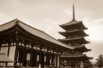 Kofukuji Temple and Five Story Pagoda, NaraPark