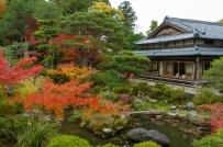 Pond, Yoshikien Garden, Nara Park