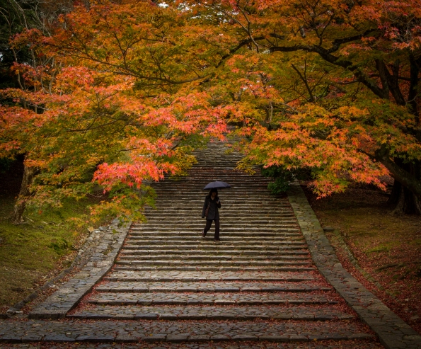 The woman on the stairs, Nara Park