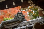 Temple roof decoration and autumn colours, NaraPark