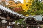 Nigatsudo Hall and Autumn Colours, NaraPark