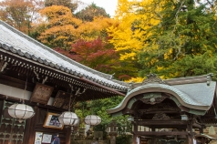 Nigatsudo Hall and Autumn Colours, Nara Park