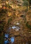 Lazy stream and autumn colours, NaraPark
