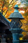 Lantern and autumn colours, Toshogu Shrine, UenoPark