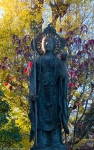Buddha and autumn colours, Tenno-Ji Temple,Yanaka