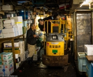 A word in your ear, Tsukiji Fish Market
