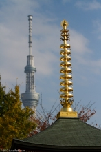Asakusa Shrine and the Tokyo Sky Tree