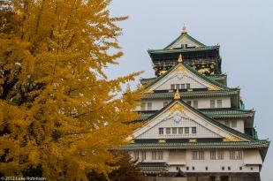 Osaka Castle and Autumn Colours