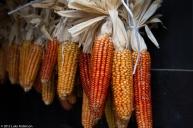 Corn hanging, Kurokawa