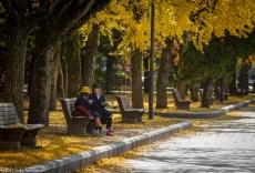 Picnic Lunch, Peace Memorial Park, Hiroshima