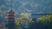 Istukushima Shrine and Pagoda from Hiroshima Bay, Miyajima