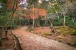 Parkland and Autumn Colours on Mount Misen,Miyajima