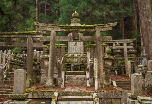 Torii gates and graves, Oku-no-in Cemetery, Koya-san
