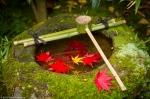 Maple leaves and wash basin, Koto-in Temple,Kyoto